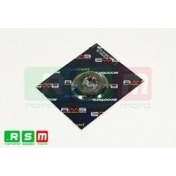Semering Piaggio 19x30x7/RMS 1600